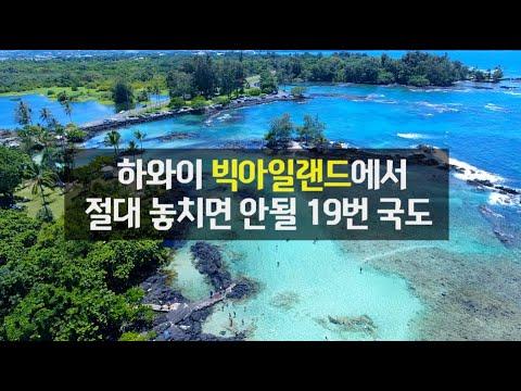SONY_1623394092k3c.jpg